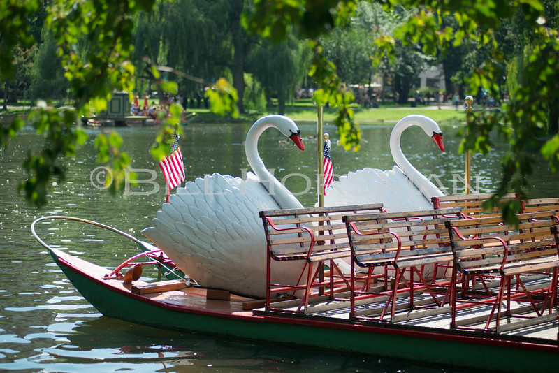 15-SwanBoats-070