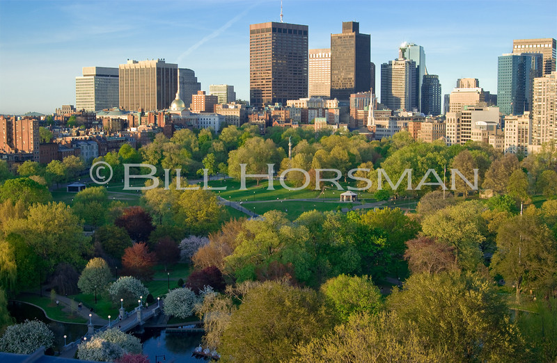 05DG-BostonCommon-02