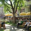 Harvard Square Cambridge
