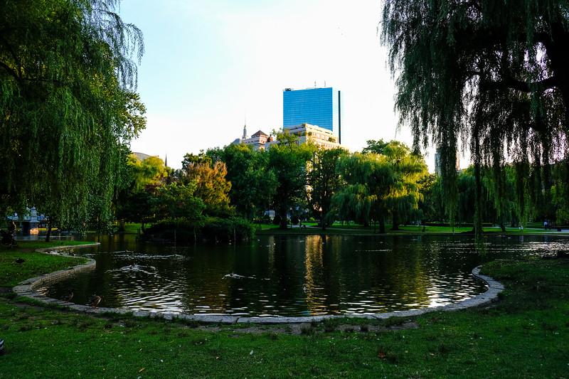 Scenic in Boston