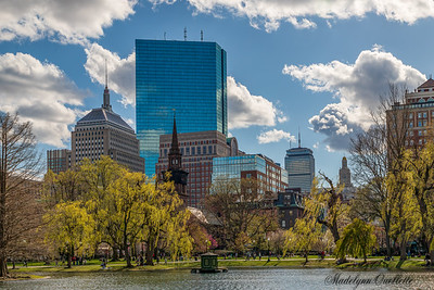 Boston Skyline in Spring