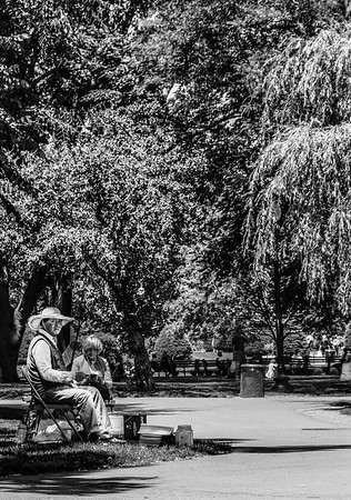 Man in the Park B&W