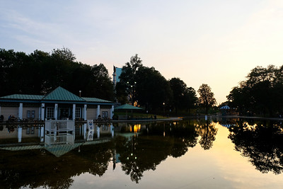 Frog Pond Reflections