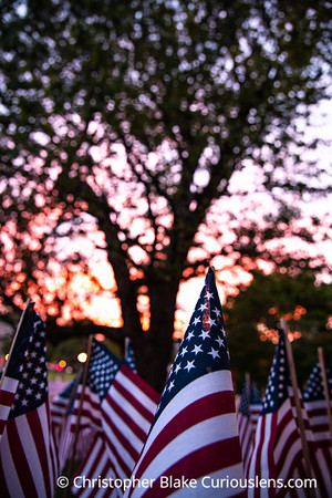 Memorial Day flags Boston Common Two
