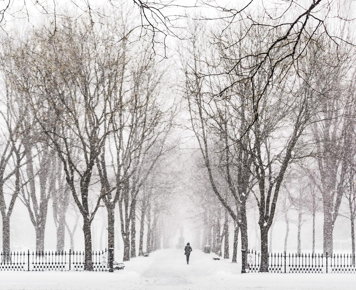 Walking In A Blizzard