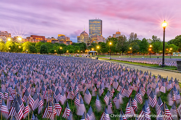 Memorial Day flags Boston Common