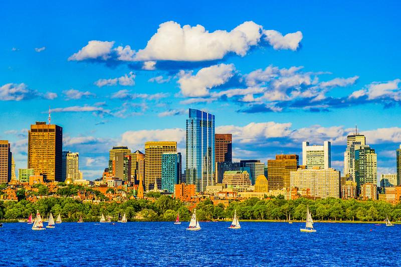 Boston Skyline in Summer