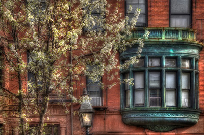 Boston Back Bay Collection