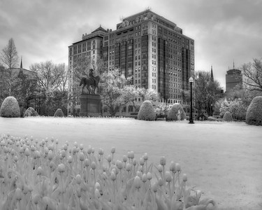 Boston Public Garden in Black and White