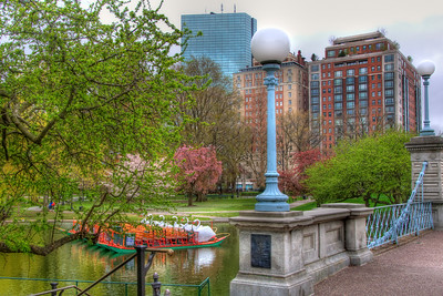 Boston Public Garden Swan Boats