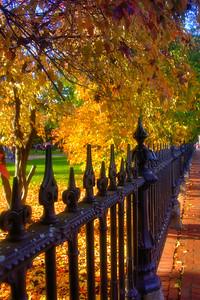 Touched by Autumn - Boston Public Garden