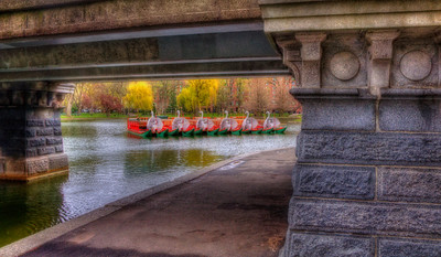 Boston Public Garden Swan Boats 2