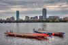 Dragon Boats - Boston Skyline
