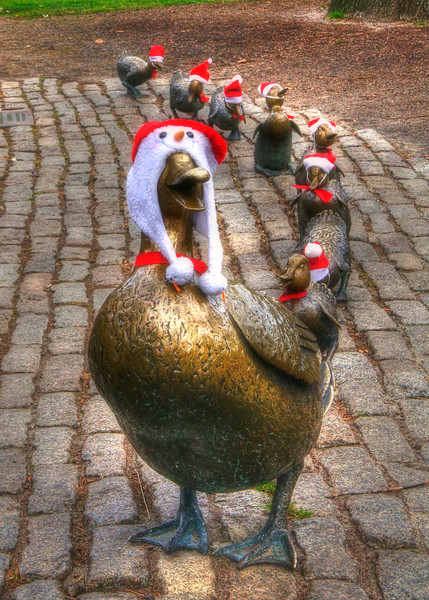 Make Way for Ducklings Holiday Card