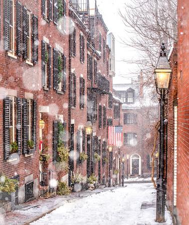 Snowy Acorn Street