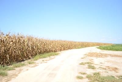 Bostwick Plantation