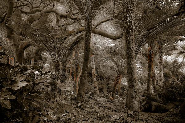 GG Park Sepia Jungle 0241cs