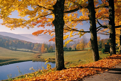 Vermont Morning L12V2