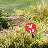 Bot garden gates and hummingbird trail
