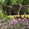 Caryophyllaceae - <br /> Dianthus - Bath's Pink<br /> Woven Whimsy: Stickworks by Patrick Dougherty