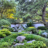 Love the Japanese Garden