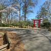 Birmingham Botanical Gardens HDR and Cropped