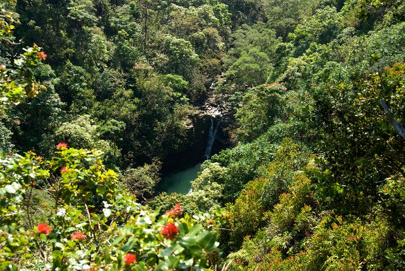 Hawaii: Maui, Garden of Eden Arboretum and Botanical Garden ...