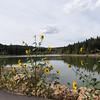 Payson Lake, Mount Nebo loop road
