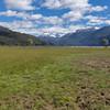 (excursion along B2 to the base Cerro Tronador, Parque Nacional Nahuel Huapi)
