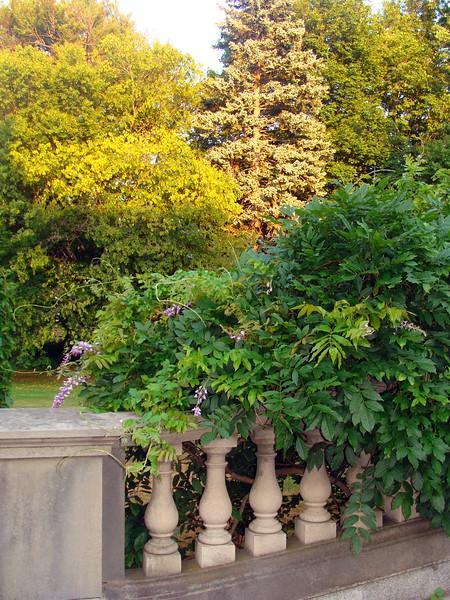 Garden Patio Walkway