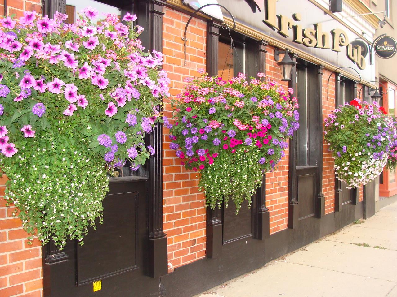 Irish Pub Hanging Flower Baskets