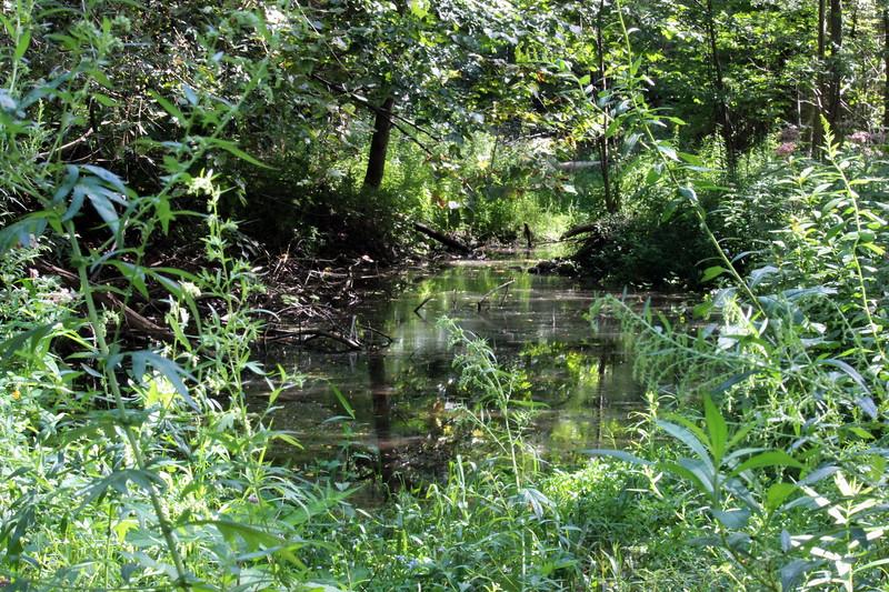 Ganargua Creek