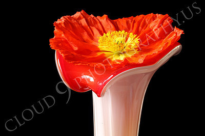 FLOW 00128 An icelandic poppy flower in full blow resting in a vase with a flower design, by Peter J Mancus
