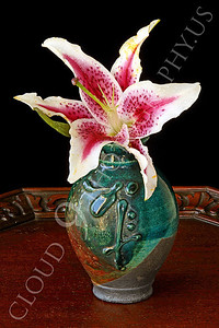 FLOW 00315 A stargazer flower in a green vase on a wood table, by Peter J Mancus