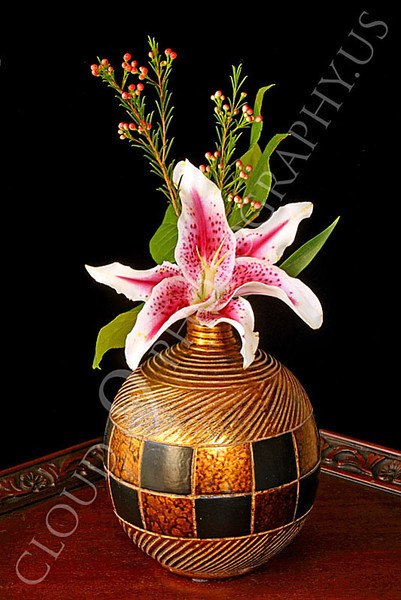 FLOW 00325 A stargazer flower in a gold vase on a wood table, by Peter J Mancus