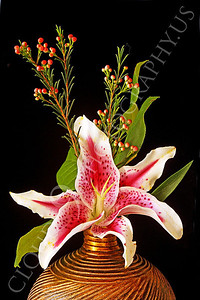 FLOW 00301 A single stargazer lily in a small floral arrangement in a gold vase, by Peter J Mancus
