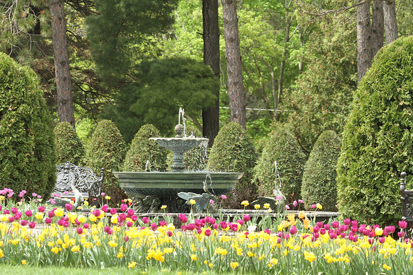 Fountain, Trees And Flowers