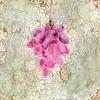 """""""The Dilemma Botany Garden-Grape"""" (acrylic on panel) by Blessy Kuen Yat Man"""