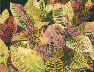 """Croton"" (acrylic) by Jane Frendberg"