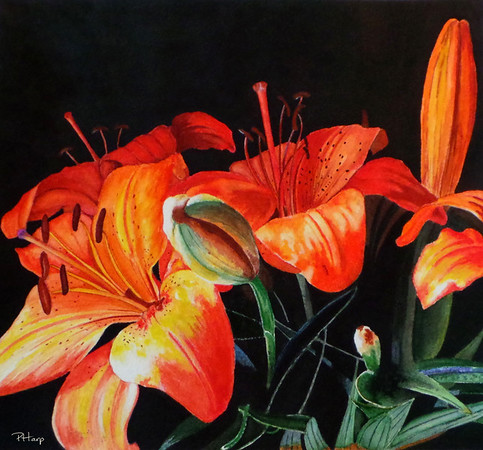 """Glistening in the Darkness"" (watercolor) by Pam Harp"