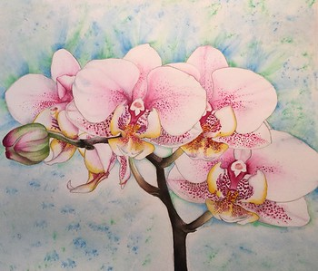"""Blushing Orchids"" (watercolor) by Catherine Martinez-Perez"