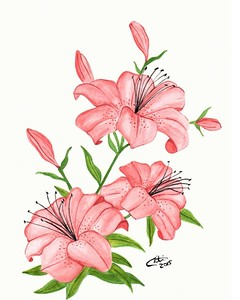 """Tiger lilies"" (watercolor) by Christina deSousa"