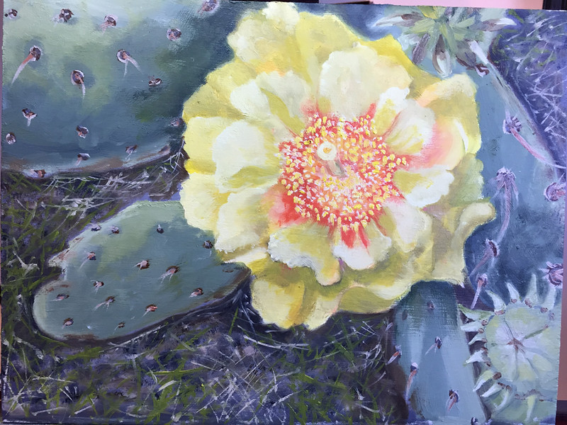 """Cactus Flower"" (oil on panel) by Crista Bromley"