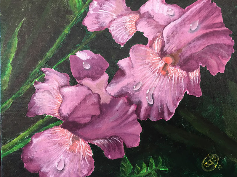 """Purple Iris"" (acrylic on canvas) by Crista Bromley"