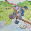 """Withering Grapes"" (watercolor) by Susan Heed-Myers"