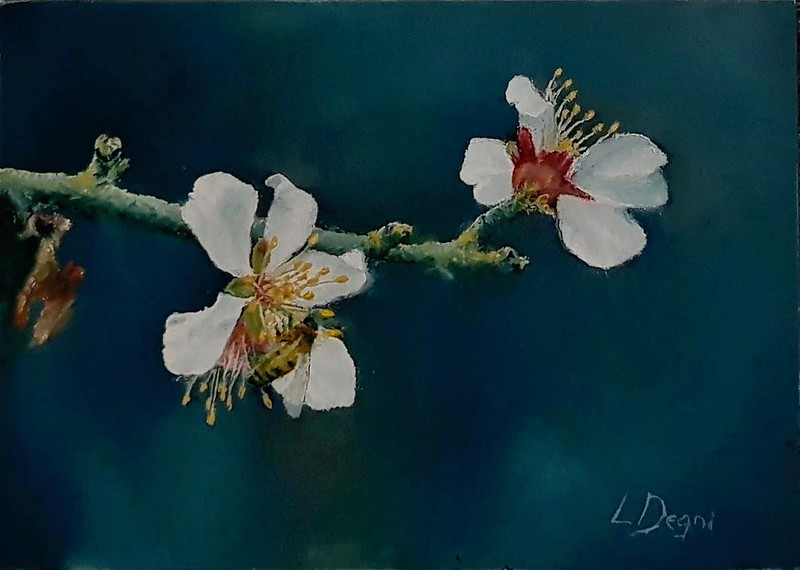"""""""The Peach Blossoms"""" (oil on panel) by Louis Degni"""