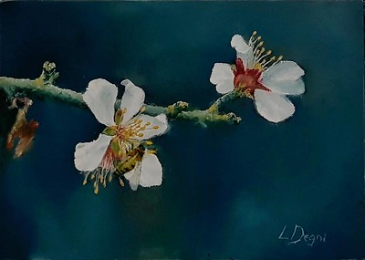 """The Peach Blossoms"" (oil on panel) by Louis Degni"