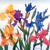 """Irises rainbow flowers"" (oil on canvas) by Marina Komissarova"