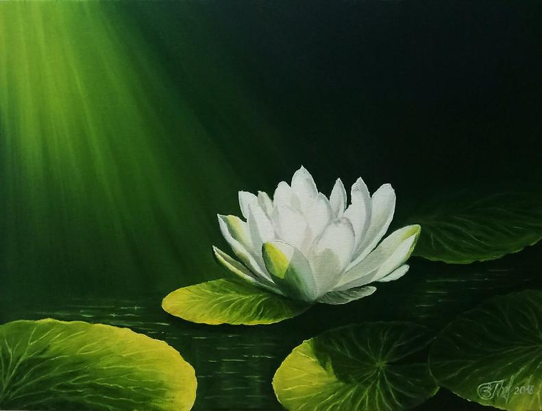 """Nymphea"" (oil on canvas panel) by Elena Gorbacheva"