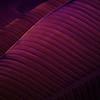 """Night Leaves"" (mixed media) by Romi Maegli"